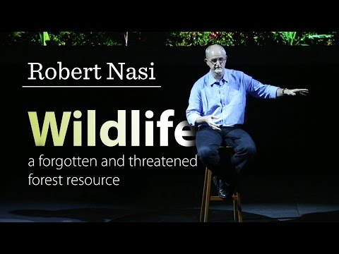 Robert Nasi - Wildlife: a forgotten and threatened forest resource