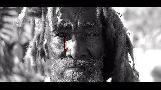 Steel Pulse - Cry Cry Blood (Official Music Video)
