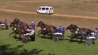 Vidéo de la course PMU TROPHEE VERT
