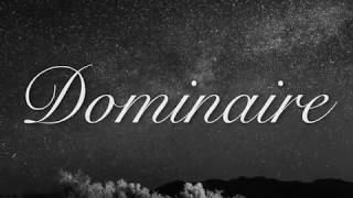 Dominaire - Dominate the canvas