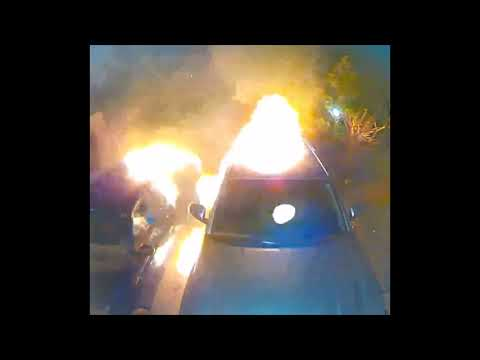 Sorrento Valley Arson Case