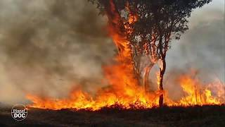Australia. Aboriginal Nature. Part 2