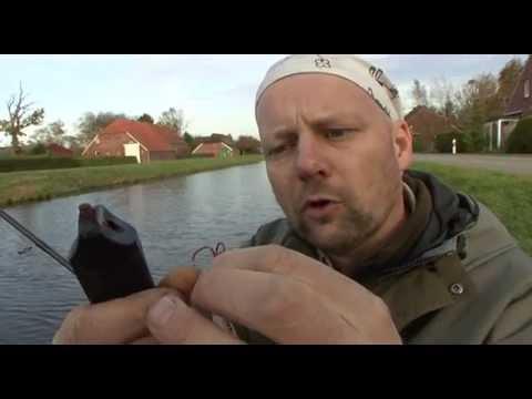 300 kg Fische schwimmen hier rum !!! Angeln auf Tiefsee-Monster (Jurassic Fjord)из YouTube · Длительность: 29 мин54 с