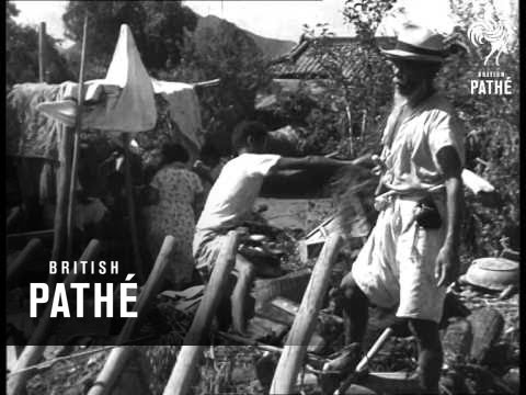 Earthquake, Floods And Typhoon (1962)