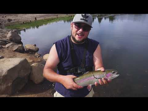 Trout And Largemouth Bass In Oregon