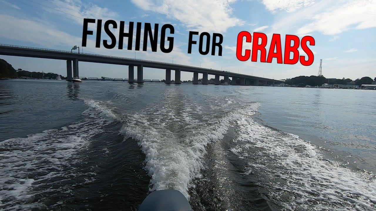 How to catch Blue Crabs with Chicken - (Catch, Clean, Cook)