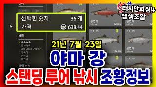 러시안피싱4│210723 야마강 스탠딩 루어 낚시 조황…