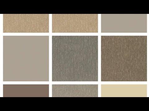 Fascino ed eleganza moderna carta da parati spatolato beige tortora | tinta unit. Come Fare Color Tortora Youtube