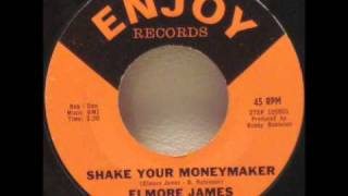 Elmore James - Shake Your Moneymaker.wmv