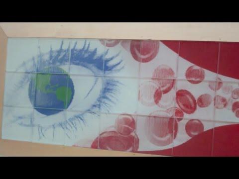 California Science Center Vlog, Part 1 (World of Life)