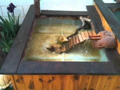 El estanque de mi casa con bidon de 1000 litros youtube for Estanque en casa