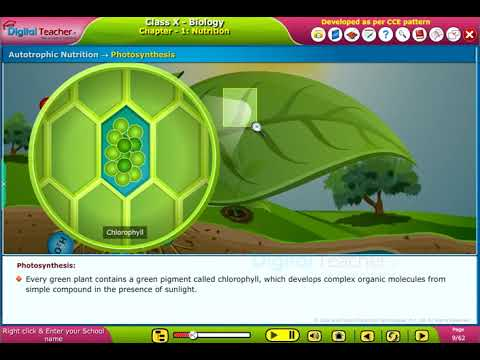 SSC Class10 Biology | Nutrition - CCE Pattern | Digital Teac