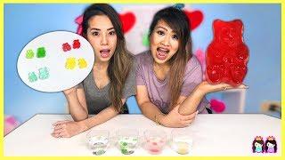 Easy DIY Science Experiments Gummy Bear Osmosis