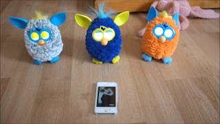 Furby's dancing to Gangnam style go crazy!