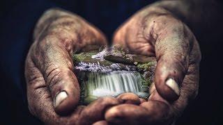 let the hands of an artist transform your backyard