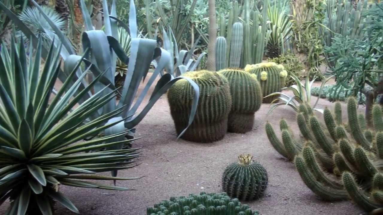 majorelle garden marrakech morocco 2013 youtube - Majorelle Garden