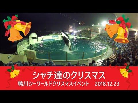 鴨川シーワールド2018 シャチパフォーマンス356 GoProでクリスマスイベントをセーフティーゾーンから4Kで撮ってみた killer whale show