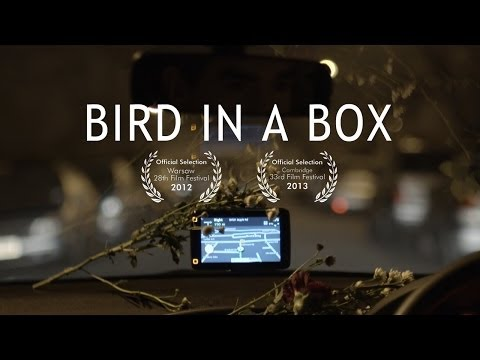GPS comedy  Bird In A Box  short film romcom  Brian d'Arcy James, Fiona Glascott