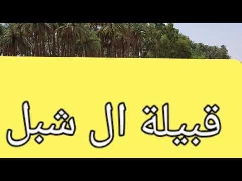 #ماذا تعرف عن قبيلة ال شبل الاصيلة