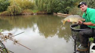 How to land big carp faster on the pole