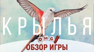 КРЫЛЬЯ (WINGSPAN) — настоящая энциклопедия птиц / обзор настольной игры