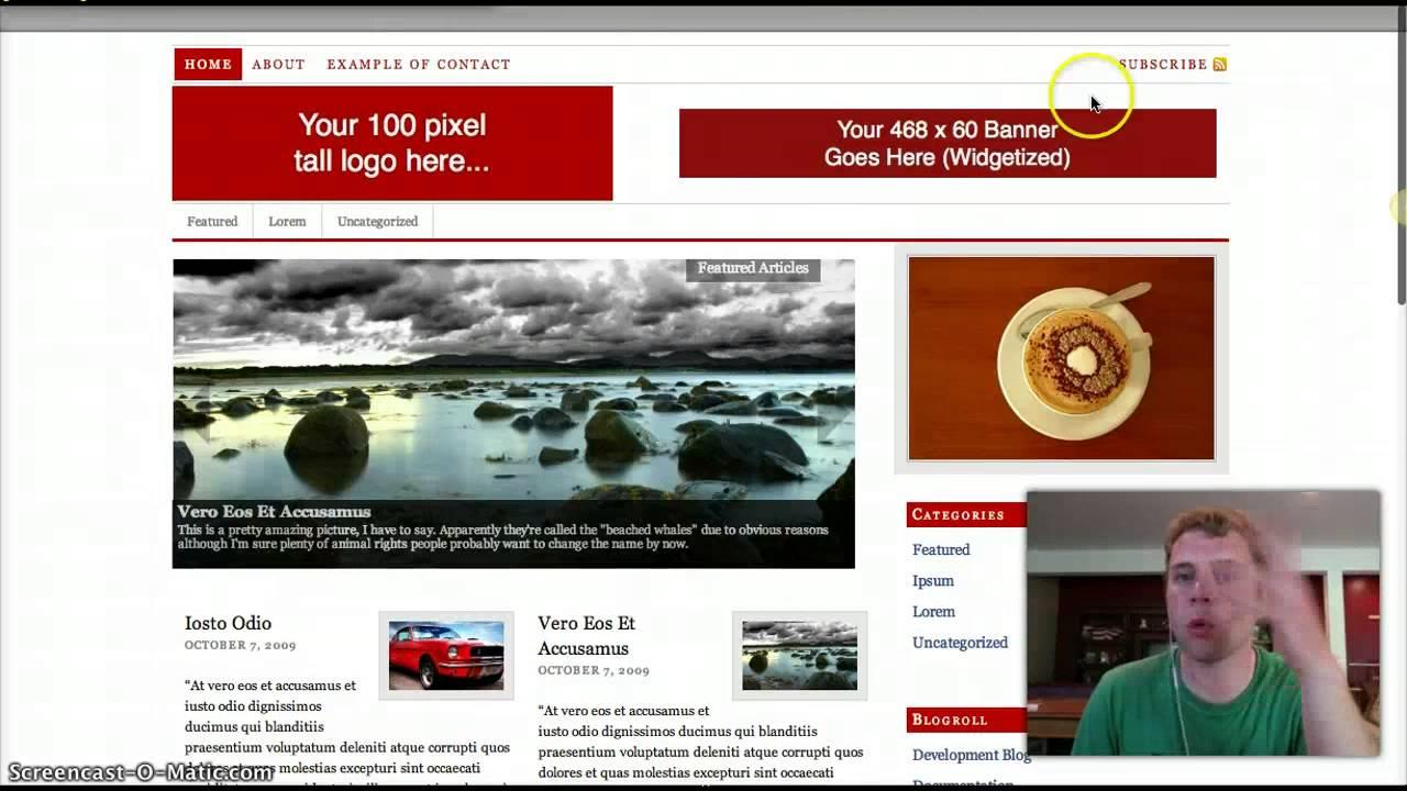 Premium Thesis Skins   Premium Themes Directory Jerusalem Post Momentum     A Business   Portfolio Premium  WP Theme