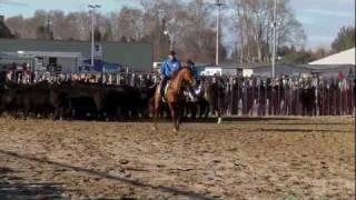 Tris du Betail, Avignon Ital-Mannschaft 2012