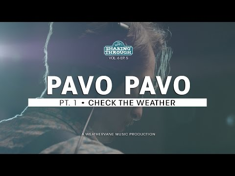 Pavo Pavo - Pt. 1, Check the Weather | Shaking Through