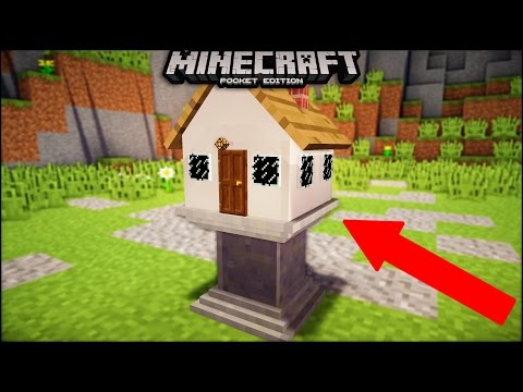 What Do Parrots Eat In Minecraft Taming Parrots In