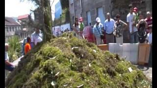 CORPUS 2011,PONTEAREAS,SERPIENTES OFRECIDAS...NEL VIDEOS