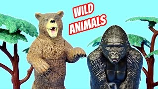 Zoo Toy Wild Animals 3D Puzzles Set Build Review - Gorilla Brown Bear