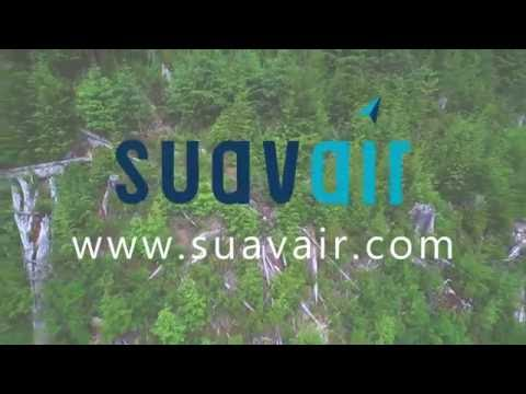 Silviculture Surveying with UAVs in Forest Management