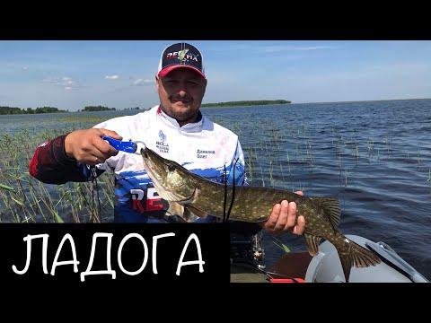 Рыбалка на щуку. Назия. Ладожское озеро