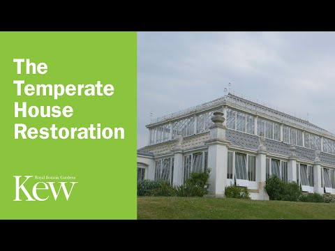 The Temperate House restoration