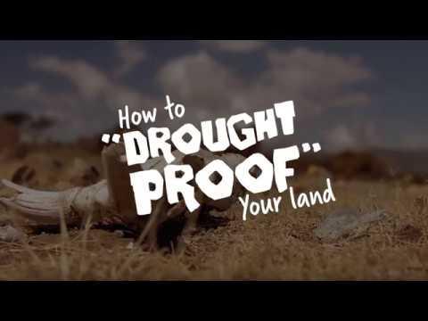 FMNR Drought Proof | World Vision Australia