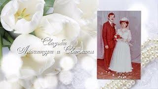 День свадьбы Александра и Светланы Королевых