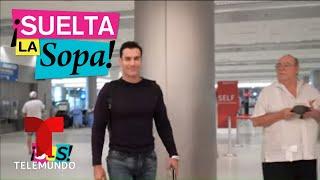 """¡TVNotas insiste con los """"gustos"""" de David Zepeda!   Suelta La Sopa   Entretenimiento"""