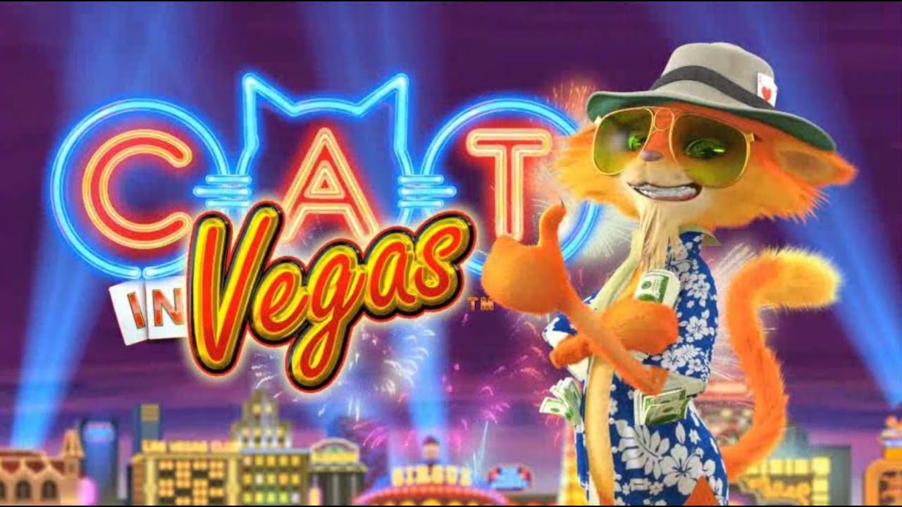 Cats free slots game deaf poker tour 2016