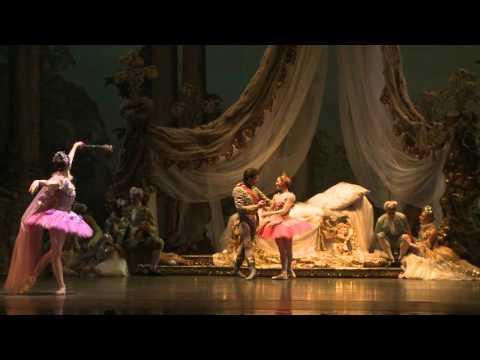 The Sleeping Beauty Houston Ballet 2016 Youtube