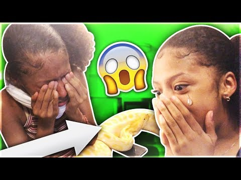 GIANT S.N.A.K.E PRANK ON MY TWIN SISTERS!! **They Literally Cried**