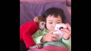 Çocuk ve en yakın arkadaşı Maymun