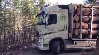 Holztransport Auer