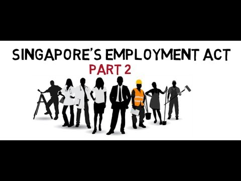 All you need to know about Singapore's Employment Act Part 2