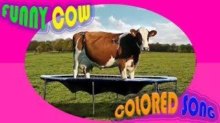 СМЕШНЫЕ КОРОВЫ ПОДБОРКА СМЕШНЫХ ВИДЕО Прикол с коровами Песенка про ЦВЕТА  Английский язык для детей