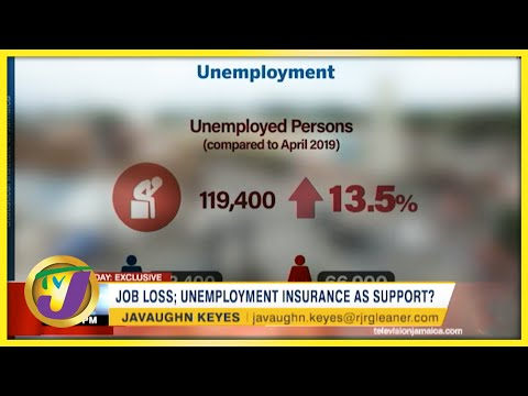 Job Loss; Unemployment Insurance as Support? | TVJ Business Day - August 19 2021