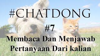 Kebiasaan Jorok MiawAug - #Chatdong Part 7