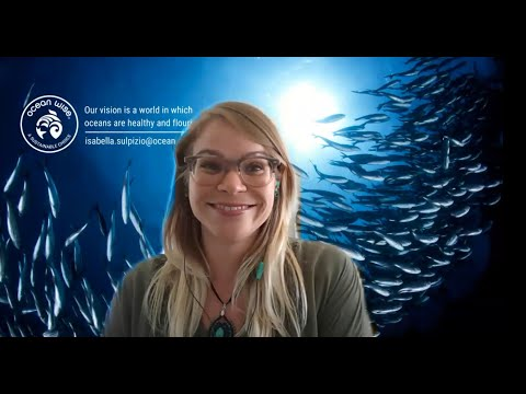 A presentation by ocean wise to spotlight on a number of challenges and solutions to overfishing.
