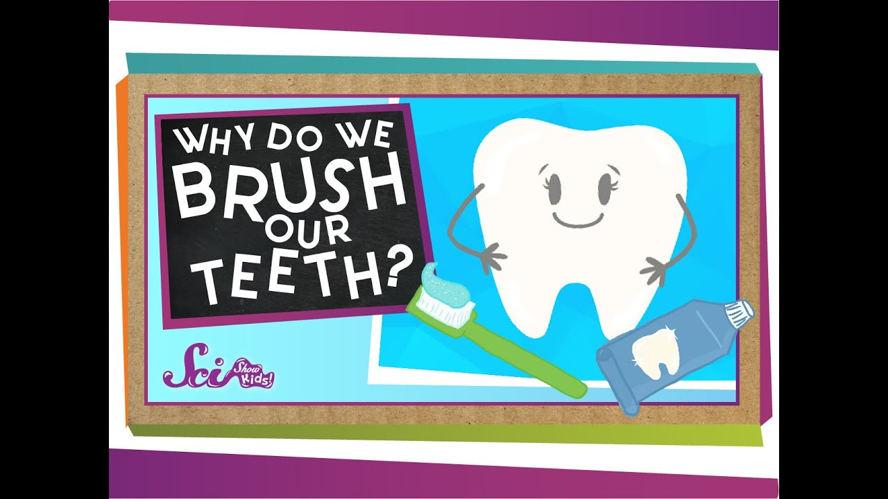 why we should brush our teeth Traditionally speaking, we all brush our teeth in the night after we have had all our meals and drinks, but a group of dentists advocates that we should brush our.
