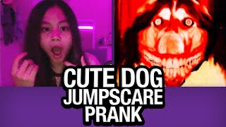 Cute Dog JUMPSCARE PRANK on Omegle!