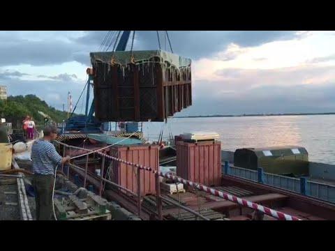 Первые косатки и белухи поплыли к свободе из Хабаровска в Николаевск полная версия 21 июня 2019